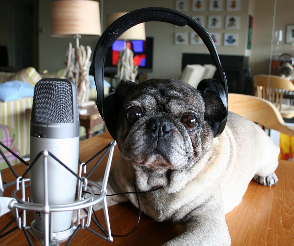 ABC izdelave podcasta: Kako, zakaj in kdaj