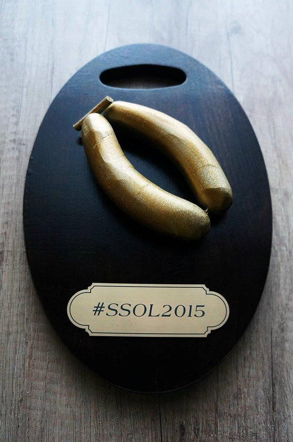 Savičeva spletna osebnost leta 2015: Finale